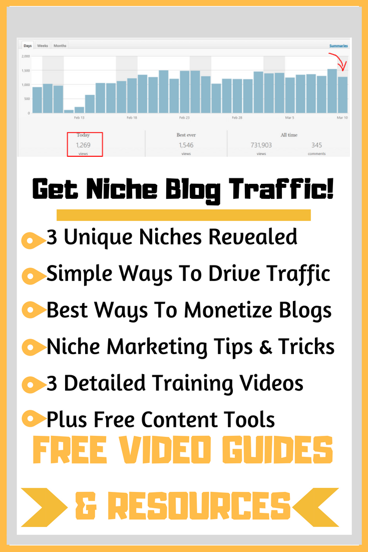 Get Niche Blog Traffic like this